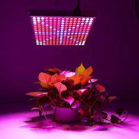Светодиодная лампа для растений Европейская вилка