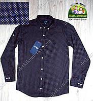 Рубашка темно-синяя ARMANI