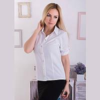 Женская блуза АРТ306, фото 1
