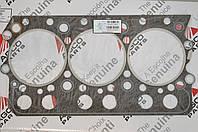 V836122443 прокладка головки блока, ОРИГИНАЛ AGCO