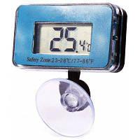 Цифровой аквариумный термометр Синий