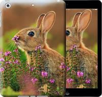 """Чехол на iPad 5 (Air) Кролик и цветы """"3019c-26-10409"""""""