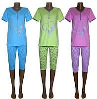 Женские пижамы серии Кошка ТМ УКРТРИКОТАЖ теперь в летнем дизайне!