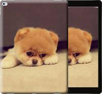 """Чехол на iPad Pro 12.9 Boo 2 """"890u-362-10409"""""""