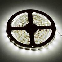 Гибкие светодиодные полосы HML 5M 36W 300 х SMD 3528 Холодный белый свет