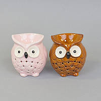 "Аромолампа для эфирных масел ""Сова"" CY609, керамика, 9х8х7 см, в коробке, аромалампа, аромо-лампа, аромо лампа для релакса"