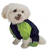 Одежда с защитой для собак  SPORTING BLUE 28 ferplast, фото 3