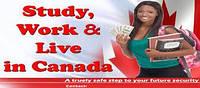 Учеба с компонентом профессиональной практики в Канаде - программы Co-Op
