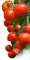 Семена томат ХИТОМАКС F1 100 сем. Китано