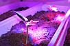 Светильник для растений светодиодный линейный SL-020F 20W IP65 (fito spectrum led) Код.58825, фото 8