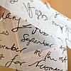 Тканевые роллеты из ткани  Letter Screen