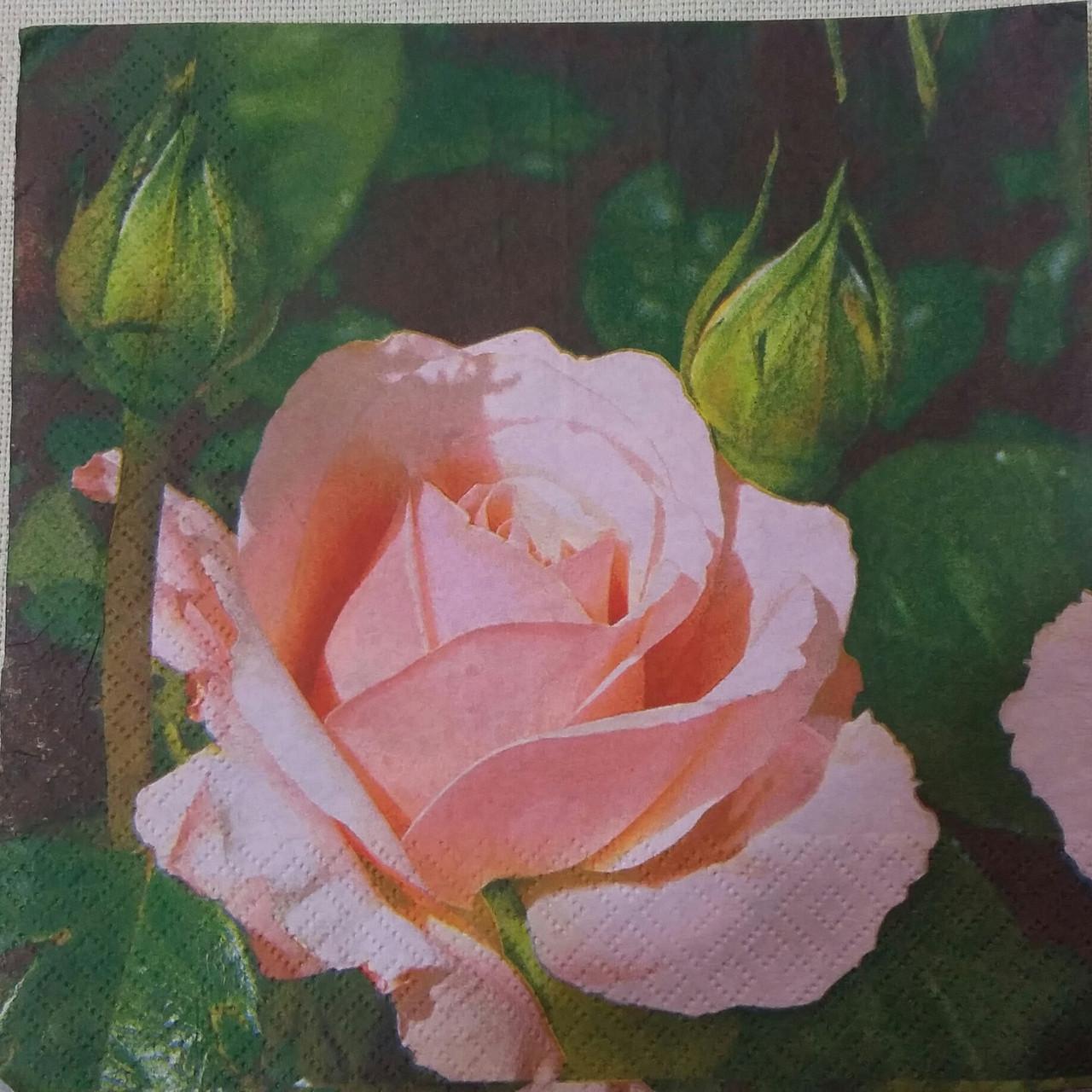 """Салфетка для декупажа """"Роза"""",33х33 см, 6"""