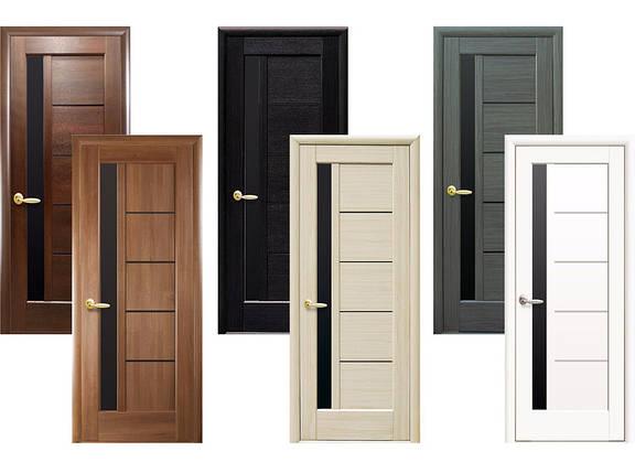 Двери межкомнатные Новый стиль Дверное полотно Грета BLK, фото 2