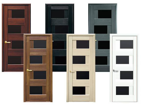 Двери межкомнатные Новый стиль Дверное полотно Сиена BLK, фото 2