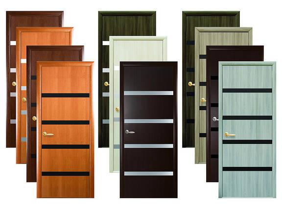 Двери межкомнатные Новый стиль Дверное полотно  Нора BLK, фото 2
