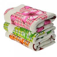 Кухонные полотенца 1303 махра