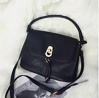Сумка Селин Celine  sk258494 сумки копии оптом и в розницу, фото 1