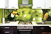 Стеклянные Кухонные фартуки, Скинали под заказ, фото 5