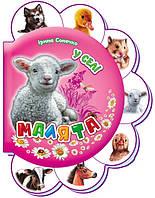 Малята У селі (укр) Книжки-картонки для малюків від 1 року з серії Малюки Ранок