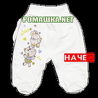 Ползунки (штаны) на широкой резинке с начесом р. 74 ткань ФУТЕР 100% хлопок ТМ Алекс 3180 Бежевый А