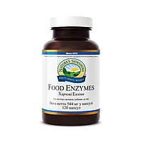 Food Enzymes Пищеварительные ферменты