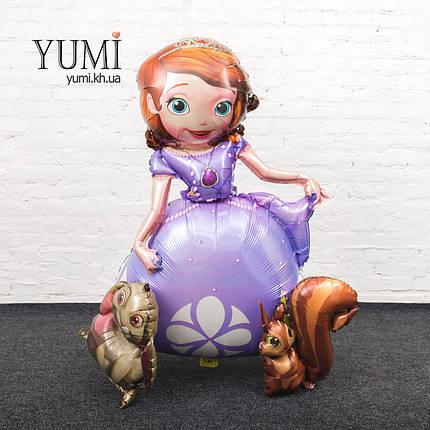 Ходячий шар фигура Принцесса София, фото 2