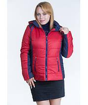 Куртка демисезонная женская № 15 (р. 44-56), фото 3