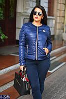 Женская куртка демисезонная плащевка на синтепоне 50 52 54 56 58Женские куртки плащевки оптом розница 7 км