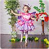 Дитячий карнавальний костюм Метелика(Феї)