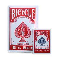 Bicycle Big Box Rider Back