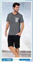 Комплект футболка и шорты SEXEN
