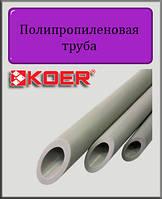 Полипропиленовая труба Koer PN20 50х8,3, фото 1