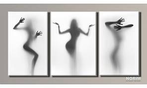 "Модульная картина на холсте ""Женский силуэты 2"" (HAT-055)"