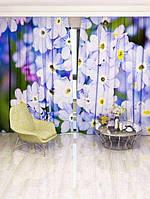 Фотоштора Полевой цветок (6888o_1_1)