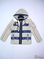 Куртка демисезонная для мальчика серая (140 см.)  Skorpian 2100000322442