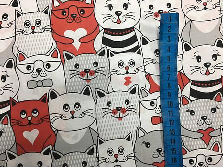 """Польская хлопковая ткань """"коты серо-красные"""", фото 2"""