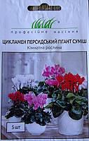 Семена цветов Цикламен персидский смесь 5 шт