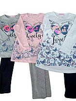 Комплект-двойка для девочки, размеры 4-12 лет, Sincere, арт. BF009