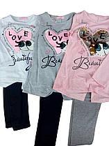 Комплект-двойка для девочки, размеры 4-12 лет, Sincere, арт. BF008
