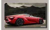 Картина на холсте Hot Sport Auto (HAS-264)