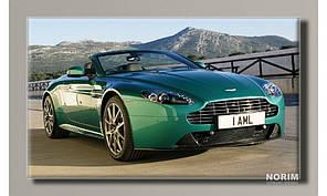 """Картина на холсте """"Aston Martin 2010"""" (HAS-257)"""
