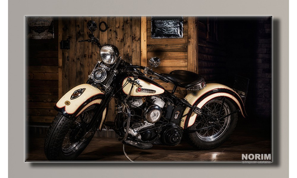 "Картина на холсте Holst Art ""Harley-Davidson 2"" (HAS-273)"