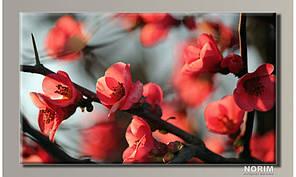 "Картина на холсте ""Цветы 12"" (HAS-316)"