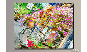 "Картина на холсте  ""Велосипед в цветах"" (HAS-030)"