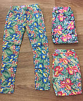Брюки для девочек Nice Wear оптом, 134-164 pp., фото 1