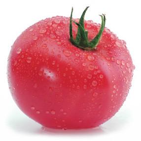 Картинки по запросу tomat