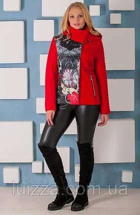 Женская демисезонная куртка с принтом 44 - 60р  красная, фото 2