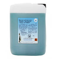 Средство для мытья стеклянных поверхностей 10л Ecochem (Италия)