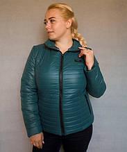 Куртка демисезонная женская № 5/1 (р. 50-56) Зеленый