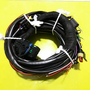 Проводка к электронике STAG 200 GO FAST
